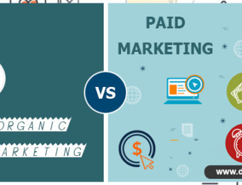 Organic Marketing vs Paid Marketing